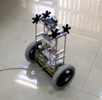 Wheeled Inverted Pendulum Robot (πBot)